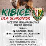 plakat_schroniska